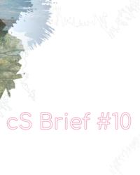 cs-brief10-visual