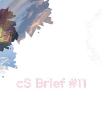 cs-brief11-visual